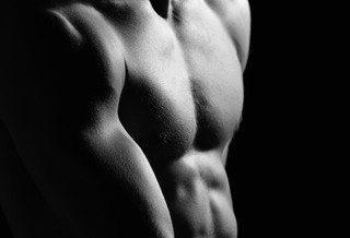 Que contiennent les protéines ?