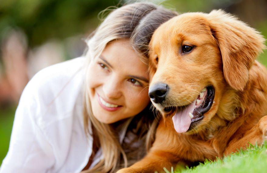 Réservez avant les autres la famille d'accueil de votre chien pendant votre absence
