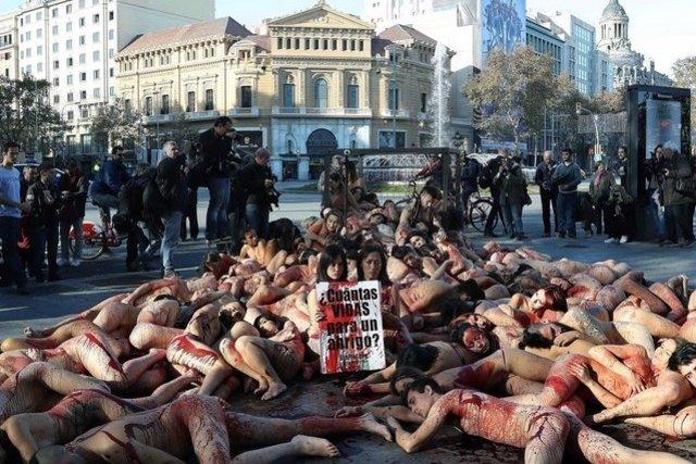 Espagne : des activistes se déshabillent pour protester contre les abus envers les animaux.